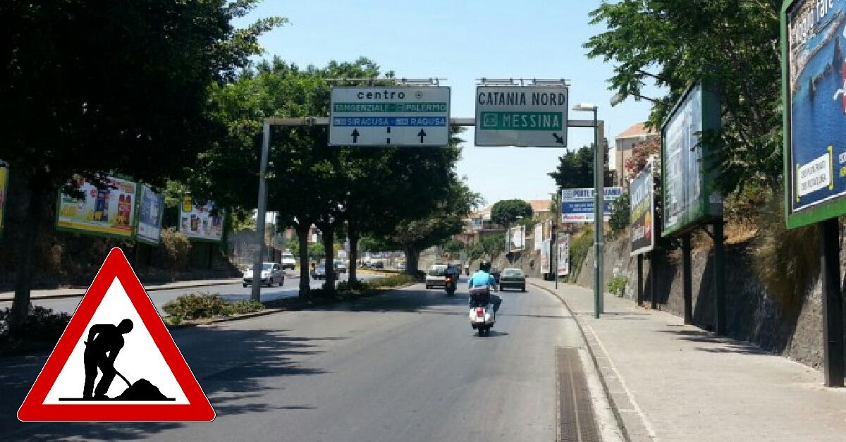 Potatura alberi nei viali ulisse e marco polo divieto di for Ufficio decoro urbano catania
